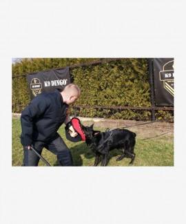 Rękaw treningowy otwarty z tkaniny ringowej do szkolenia młodych psów BELL