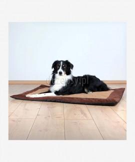 Mata dla dużego psa RAPHAEL Trixie do 100 cm