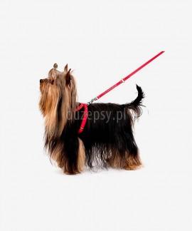 Smycz zdobiona kryształkami dla małego psa lub kota GLAMOUR