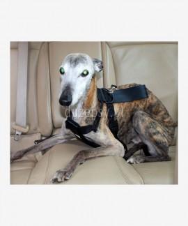 Szelki samochodowe dla psa DINGO S-XL