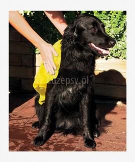 Super chłonna rękawica do osuszania sierści psa Trixie