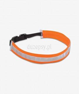 Opaska odblaskowa dla psa REFLEX 28-54 cm
