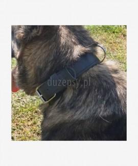 Obroża dla owczarka niemieckiego skórzana CYWIL Dingo Gear