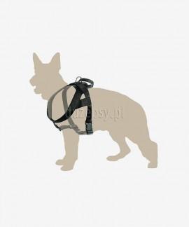 Mocne szelki z uchwytem dla dużego psa z taśmy do 100 cm