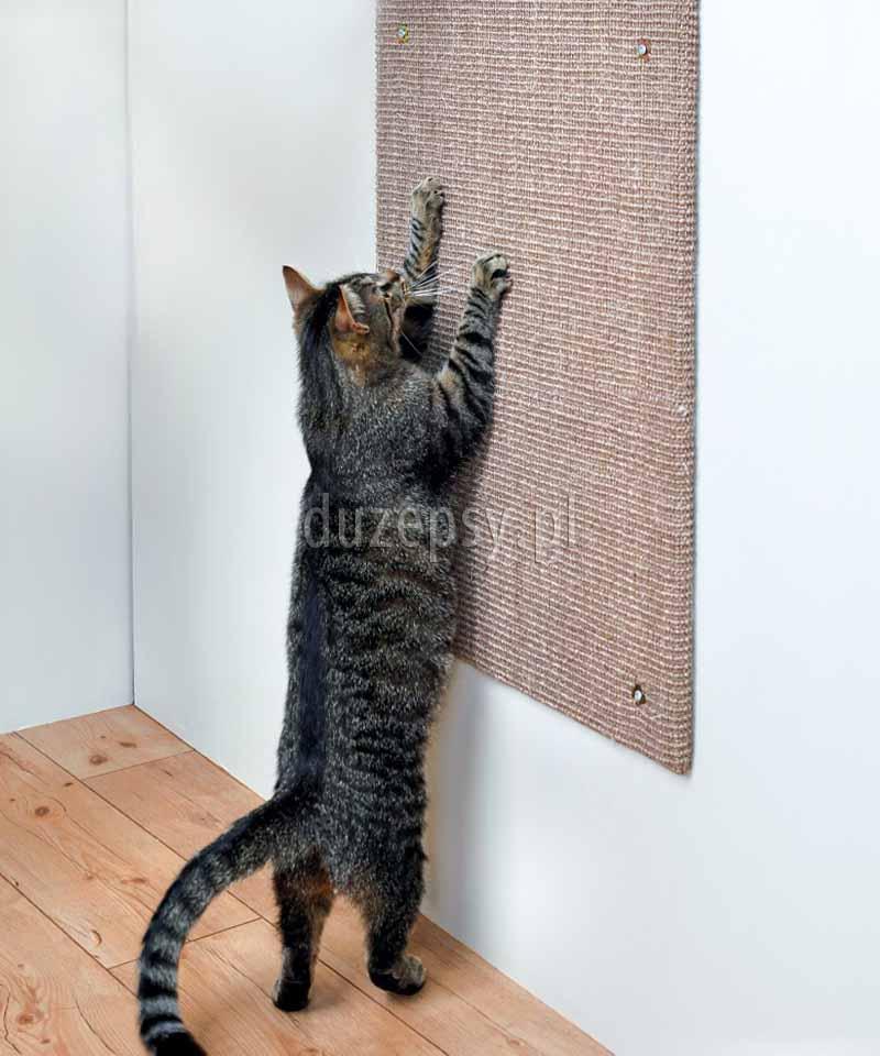 Drapak dla kota na ścianę z sizalu XL. Drapaki dla kotów tanio. Drapak dla kota płaski na ścianę. Drapak dla dużego kota. Drapak dla mainecoon. Mata do drapania dla kota sklep zoologiczny Duzepsy.pl