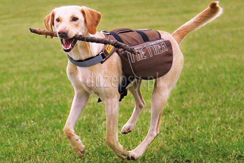 Plecak dla psa sakwy FRIENDS ON TOUR Trixie. Plecaki dla psów. Plecaki dla dużego psa. Plecaki dla psa. Sakwy dla psa. Plecaki dla psa na podróż. Plecaki dla psa na dogtrekking. Plecaki dla psa Trixie. Sklep zoologiczny DuzePsy.pl. Sklep zoologiczny internetowy akcesoria do sportów z psami.