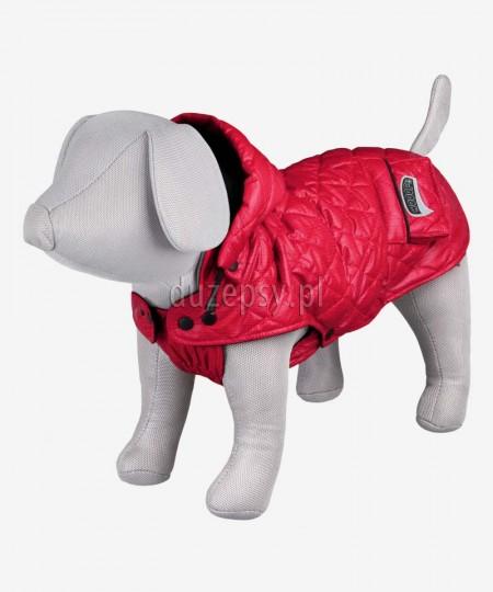 Ciepła kurtka dla małego psa z odpinanym kapturem SILA Trixie