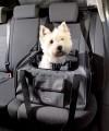 Torba transporter dla małego psa do samochodu Trixie 44 × 30 × 38 cm