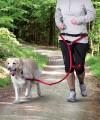 Pas do biegania z psem i smycz z amortyzatorem TRIXIE