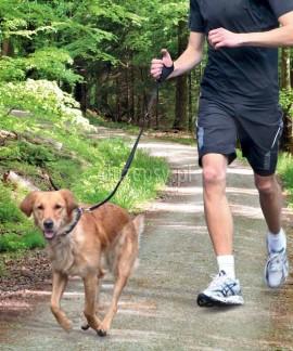 Smycz z amortyzatorem do biegania z psem Trixie
