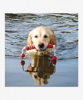 MOT®Fun pływająca zabawka dla dużego psa z naturalnej gumy 20 cm/42 cm