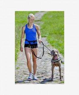 Pas do biegania z psem i smycz z amortyzatorem DINGO