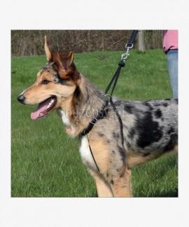 Szelki dla psa zapobiegające ciagnięciu EasyWalk Basic Trixie