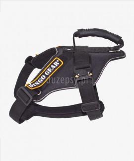 Szelki dla dużego psa do pracy i szkolenia K9 EXTREME COBRA Dingo Gear