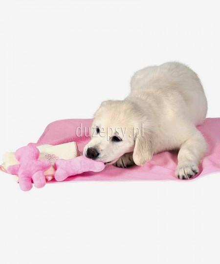Wyprawka dla szczeniaka różowa Trixie - Koc, ręcznik, 2 zabawki