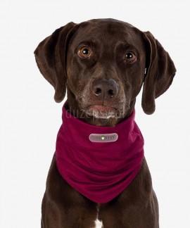 INSECT SHIELD ® Bandamka dla psa przeciw kleszczom, pchłom, owadom