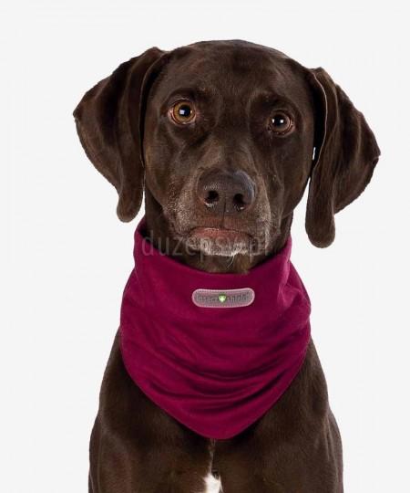 Bandamka dla psa chroniąca przed insektami, owadami INSECT SHIELD ®