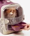 Transporter dla kota CABRIO Catit szary 35 x 51 x 33 cm