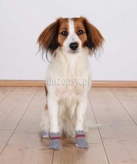 Skarpetki antypoślizgowe dla psa Trixie 2 szt.
