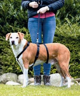 Szelki dla psa, który ucieka STAY Trixie