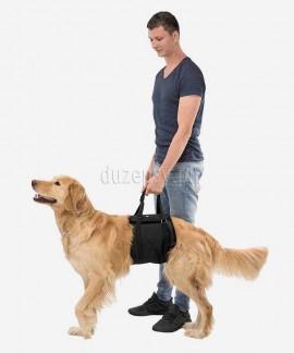 Uprząż rehabilitacyjna tylna dla psa nosidło Trixie
