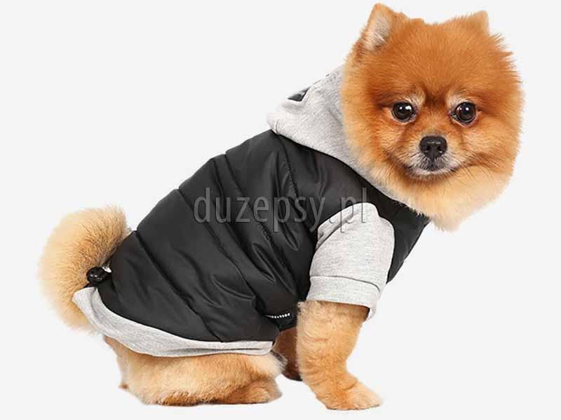 Ubranko dla małego psa kurtka z kapturem DoggyDolly. Ubranko dla yorka na zimę kurtka z kapturem. Ubranko dla psa na zimę kombinezon. Ubranko dla yorka na zimę. Ubranka dla małego psa york design. Modne ubranka dla psów. Ekskluzywne ubranko dla yorka. Ubranka dla psa shihtzu. Kombinezon dla yorka. Ubranko dla yorka. Ubranko dla chihuahua. Kurtka dla yorka. Kurtka zimowa dla małego psa. Kombinezon dla psa. Ubranka dla psów sklep zoologiczny Duzepsy.pl