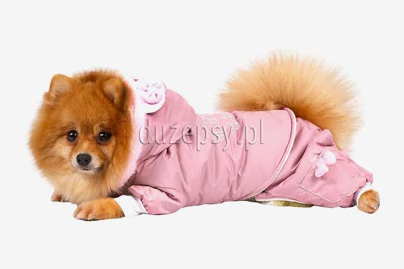 Ubranko dla psa na zimę kombinezon GLITZ & GLAMOUR DoggyDolly, ubranko dla psa chihuahua, ubranko dla psa sklep, ciepłe ubranko dla psa. Ubranko dla yorka na zimę. Ubranka dla małego psa york design. Modne ubranka dla psów. Ekskluzywne ubranko dla psa yorka. Ubranka dla psa shihtzu. Kombinezon dla yorka różowy. Ubranko dla yorka różowe. Ubranko dla chihuahua. Kurtka zimowa dla małego psa. Kombinezon dla psa. Ubranka dla psów. Kurtka dla yorka.