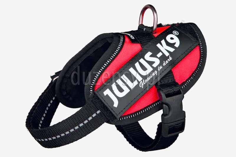 Szelki dla małego psa. Szelki dla małych psów Julius-K9. Szelki dla psa Julius Baby 2. Szelki julius k9 idc. Szelki julius k9 power. Szelki odblaskowe dla małych psów. Szelki Julius k9 power dla małego psa.