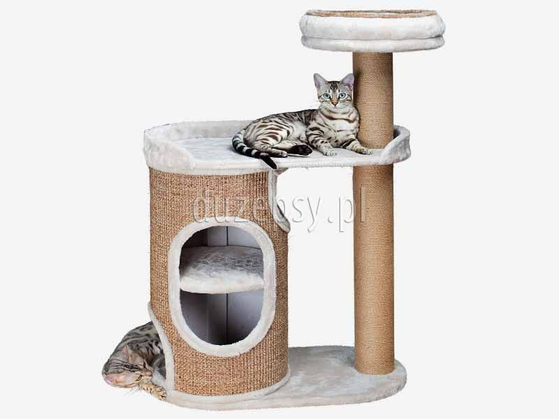 drapak dla kota z domkiem i legowiskiem, ekskluzywny drapak dla kota; drapak dla kota z domkiem; drapak dla kota wieża; elegancki drapak dla kota; drapak dla dwóch kotów, domek dla kota z drapakiem Trixie; drapaki dla kota sklep; domek dla kota; legowisko dla kota z drapakiem; drapak dla kota sklep internetowy; drapaki dla kota Trixie; drapaki z sizalu; drapaki dla kotów sklep online; sklep zoologiczny; hurtownia zoologiczna; duzepsy.pl; drapaki Trixie; akcesoria dla kotów
