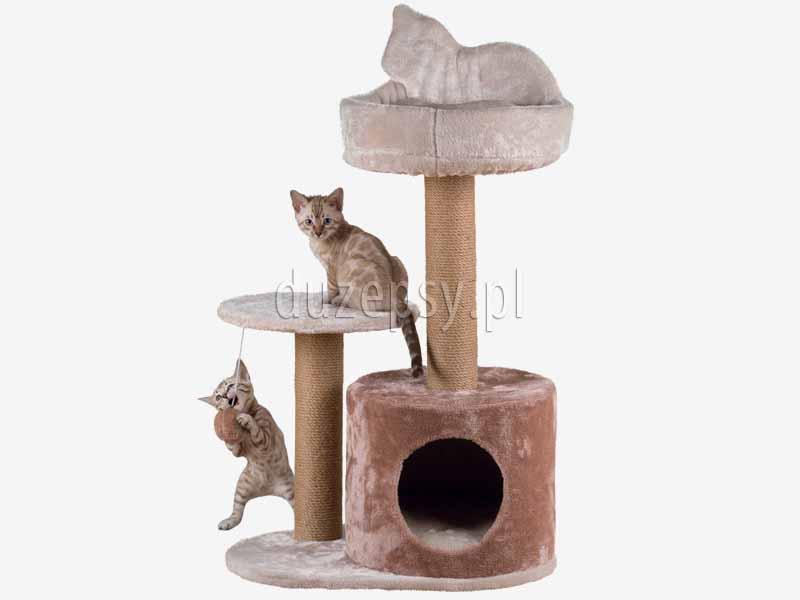 drapak dla kota z domkiem i legowiskiem trixie, ekskluzywny drapak dla kota; drapak dla kota z domkiem; elegancki drapak dla kota; drapak dla dwóch kotów, domek dla kota z drapakiem Trixie; drapaki dla kota sklep; domek dla kota; legowisko dla kota z drapakiem; drapak dla kota sklep internetowy; drapaki dla kota Trixie; drapaki z sizalu; drapaki dla kotów sklep online; sklep zoologiczny; duzepsy.pl; drapaki Trixie; akcesoria dla kotów