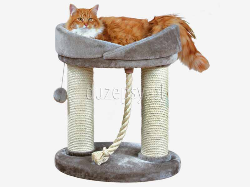 Drapak i legowisko dla kota MARCELA Trixie wys. 60 cm. Legowisko dla dużego kota z drapakiem, legowisko dla ragdolla. Legowiska dla kotów z drapakiem. Drapak dla kota z półką. Legowiska dla kota z drapakiem, drapaki dla kota, legowiska dla kotów, elegancki drapak dla kota, drapak dla kota Trixie, drapak dla kota szary, drapak dla kota sklep internetowy, drapaki dla kota sklep online, drapaki z sizalu, drapak dla kota 60 cm, tanie drapaki dla kotów, tani drapak dla kota, sklep zoologiczny duzepsy.pl, drapaki Trixie, akcesoria dla kotów