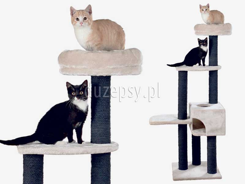 wysoki drapak dla kota z legowiskiem i domkiem, drapak dla kota ragdoll, drapak dla kota z domkiem, drapak dla kota szary, drapaki dla kota Trixie, drapak dla dużego kota, drapak dla kota maine coon; drapak dla kota brytyjskiego, elegancki drapak dla kota; drapak dla dwóch kotów, drapak dla kota sklep internetowy; drapaki dla dużego kota; drapak dla kota z domkiem; drapak dla kota duży, drapaki dla kotów sklep online; drapaki dla kotów sklep zoologiczny duzepsy.pl.