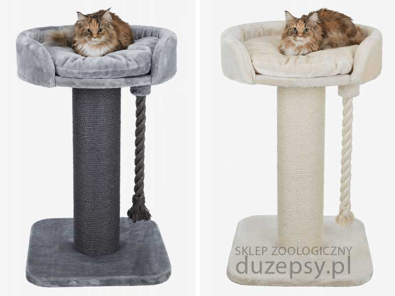 drapak dla dużego kota; drapak dla kota z legowiskiem; ekskluzywny drapak dla kota; drapak dla kota mainecoon; drapaki dla kotów sklep; elegancki drapak dla kota; drapaki dla kota Trixie; drapaki dla kota; legowisko dla kota z drapakiem; drapak dla kota sklep internetowy; drapak dla kota norweskiego; drapaki dla kotów sklep online; sklep zoologiczny; duzepsy.pl