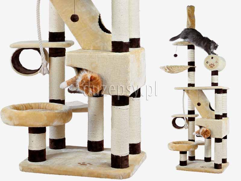 Drapak dla kota montowany do sufitu, drapak dla kota do sufitu Trixie; drapak dla kota 250 cm; wysoki drapak dla kota; drapak dla dwóch kotów; drapak dla kota z domkiem; drapak dla kota mocowany do sufitu; drapak dla kota maine coon; drapak dla dużego kota, drapak dla kota norweskiego; elegancki drapak dla kota; drapak dla kota sklep internetowy; drapak dla kota sufitowy; drapaki dla kotów sklep online; drapaki dla kotów; sklep zoologiczny; hurtownia zoologiczna; duzepsy.pl; drapaki Trixie