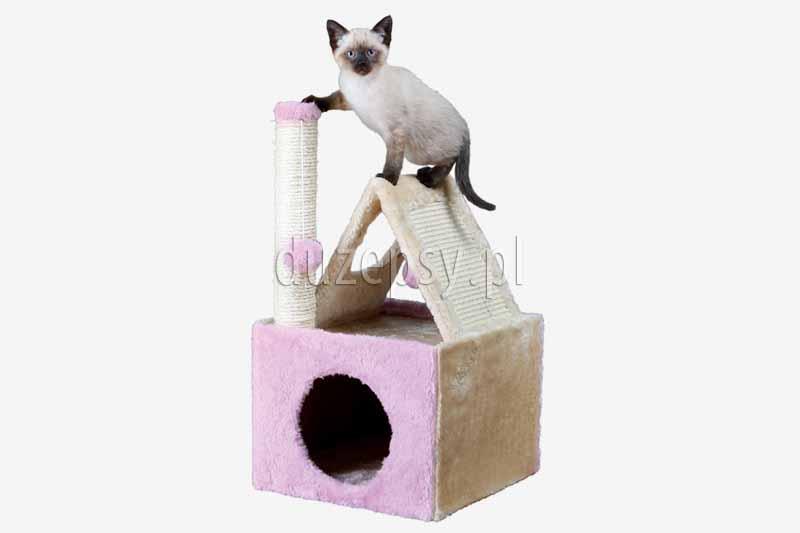 Drapak dla kota słupek z sizalu z domkiem IVA Trixie. Elegancki drapak dla kota. Drapaki z sizalu. Domki dla kotów z drapakiem. Domek dla kota z drapakiem. drapak dla kota różowy, drapak dla kota sklep internetowy, drapak dla kota z legowiskiem, drapak dla kota ragdoll. Drapak dla kota słupek. Tanie drapaki dla kotów. Drapaki dla kotów. Tani drapak dla kota. Sklep zoologiczny duzepsy.p. Drapaki Trixie, słupek z półką, akcesoria dla kotów. Drapaki dla kotów.