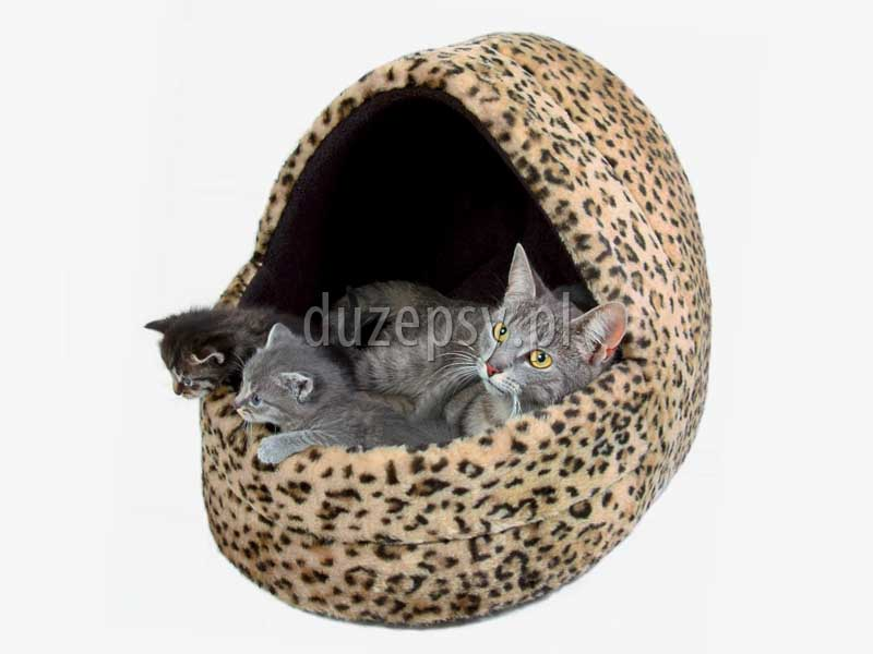 Przytulne legowisko dla kota; Domek dla kota; budka dla kota; Budka iglo dla kota; domki dla małych psów; akcesoria dla małych psów; legowisko dla kota; mocne legowisko dla kota; legowiska dla kotów; budki dla małych psów; domki dla kotów