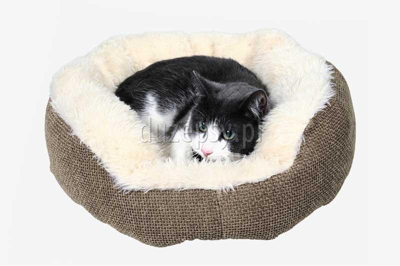 przytulne legowisko dla kota; legowisko oponka dla kota; miękkie legowisko dla kota; legowiska dla kotów; legowisko dla małego psa; ciepłe legowisko dla kota; akcesoria dla kotów; legowiska dla kotów; legowiska dla małych psów; legowisko dla persa; legowiska dla kota; sklep zoologiczny; duzepsy.pl