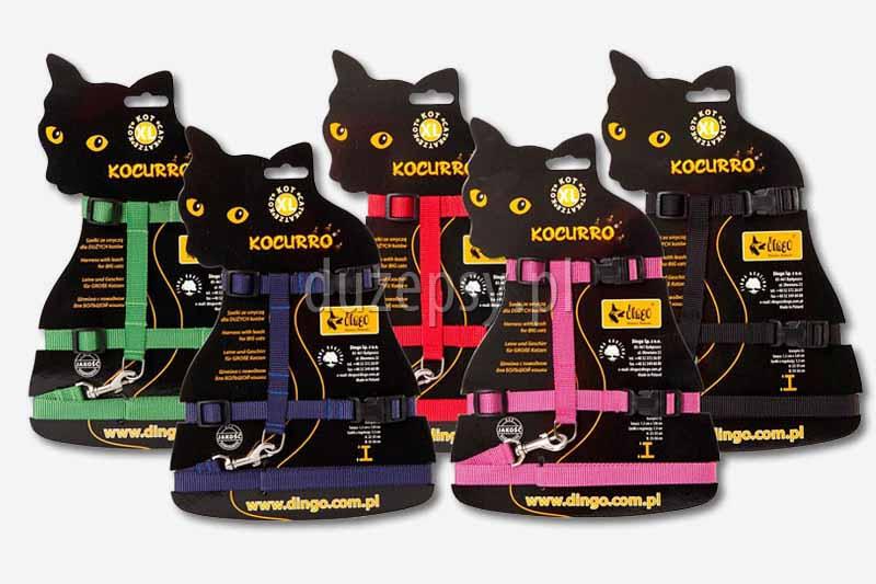 Szelki dla dużego kota i smycz. Szelki i smycz dla dorosłego kota, sklep zoologiczny, szelki dla kotów, akcesoria dla kotów, tanie szelki dla kota, DuzePsy.pl, szelki dla kota z taśmy, smycz dla kota z taśmy, smycze dla kotów.