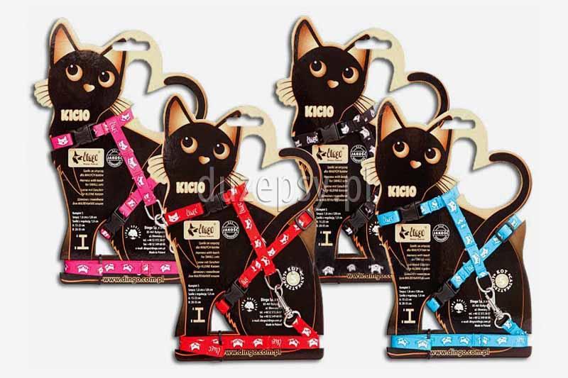 Szelki i smycz dla małego kota; zestaw szelki i smycz dla kotów; sklep zoologiczny; akcesoria dla kotów; tanie szelki dla kota; hurtownia zoologiczna; szelki dla kota z taśmy; smycz dla kota z taśmy; DuzePsy.pl