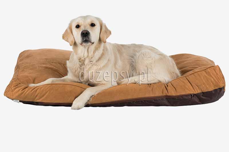 Legowisko dla dużego psa materac MONTY Trixie, materac dla dużego psa, legowisko dla psa sklep, legowisko dla psa 120 x 80, legowisko dla psa 90x60, duży materac dla psa 120 cm. Legowisko dla dużego psa 120cm. Materace dla dużego psa xxl. Materace dla dużych psów. Legowisko dla owczarka niemieckiego, legowisko dla psa boksera, legowisko dla psa 120x80. Posłanie dla psa. Legowisko dla labradora. Legowisko dla psa duże. Legowiska dla duzych psow, legowiska Trixie sklep zoologiczny duzepsy.pl