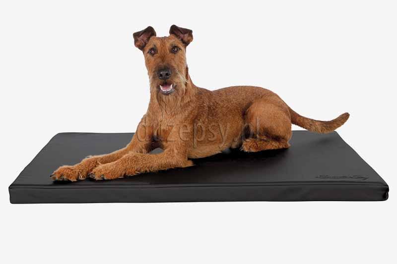 Legowisko dla psa duże eko skóra , Legowisko dla dużego psa materac trixie, legowisko dla psa nie łapiące sierści, legowisko dla psa 100 x 70, legowisko dla labradora. Legowisko dla psa xxl. Materac dla dużego psa. Materac dla psa 120cm. Duży materac dla psa. Legowiska dla psów duże. Sklep zoologiczny internetowy Duzepsy.pl