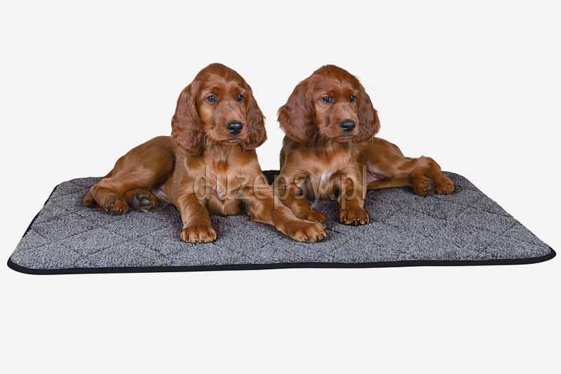 Ogrzewająca mata dla psa wyściełana Trixie do 90 cm. Duża mata dla psa do leżenia. Mata termiczna dla psa. Maty dla psów. Ciepła mata dla psa. Legowisko dla psów duże, materac dla psa, sklep zoologiczny internetowy duzepsy.pl, akcesoria dla psów dużych ras.