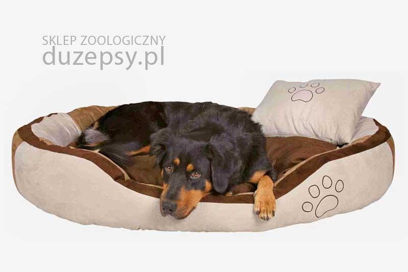 legowisko dla psa owalne, legowiska dla psów, legowiska dla dużego psa, legowisko dla dużego psa, tanie legowisko dla psa, legowiska dla psa sklep, legowisko dla średniego psa, legowisko dla psa 100x70, legowiska dla psów sklep, legowiska dla psa trixie, legowisko dla psa 120x80, legowisko dla psa goldena, legowisko dla psa beagle, legowisko dla psa 120 cm, legowisko dla psa 100cm, legowisko dla psa 80 cm, legowisko dla psa labradora, legowiska dla psa boksera, legowisko dla psa 60x80