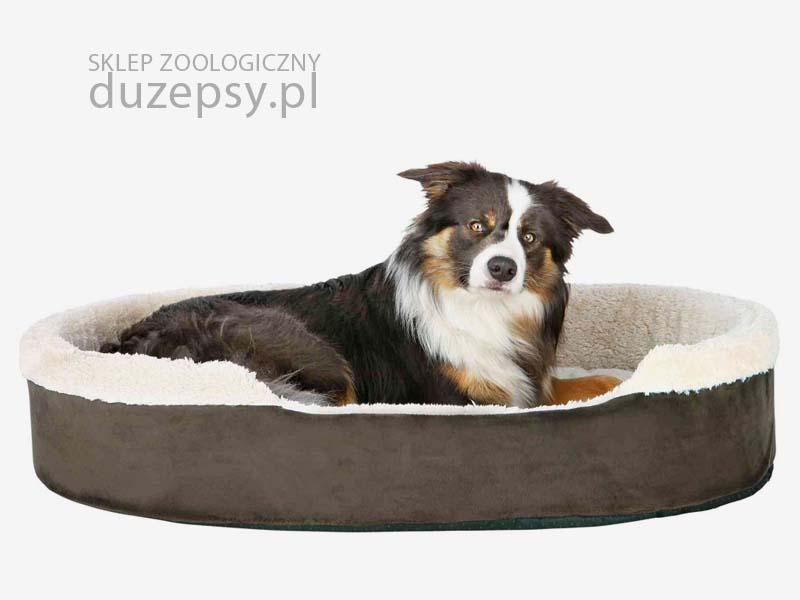legowisko dla dużego psa; legowisko dla psa pluszowe; legowiska dla psa Trixie; legowiska dla psa sklep; legowisko dla średniego psa; legowisko dla psa goldena; legowisko dla psa beagle; ciepłe legowisko dla psa; legowiska dla psów sklep; legowiska dla psa boksera; legowisko dla psa 100cm; legowisko dla psa 100x70; legowisko dla psa 60x80; sklep zoologiczny; duzepsy.pl
