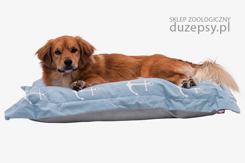 Poduszka dla psa legowisko, legowisko dla psa eleganckie, legowiska dla psa Trixie; legowisko dla średniego psa; legowisko dla psa sklep; Legowiska dla psów sklep; legowisko dla psa labradora, legowisko dla psa goldena; legowisko dla dużego psa; legowisko dla psa 70x50; modne legowisko dla psa; legowisko dla psa beagle; legowiska dla psa średniego; sklep zoologiczny; duzepsy.pl