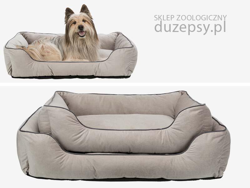 Legowisko dla psa prostokątne, legowisko dla psa sofa; legowisko dla psa szare; legowiska dla psa sklep; legowiska dla psa trixie; legowisko dla psa boksera; legowisko sofa dla psa; ekskluzywna sofa dla psa; legowisko dla psa 25 kg; legowisko dla psa labradora; kanapa sofa dla psa; sofa dla dużego psa; legowisko dla psa 100x70; legowisko dla psa 100 x 80; legowisko dla psa 80x60; legowisko dla psa amstaff; legowisko dla psa duże; legowisko dla psa golden retriever; legowisko dla psa husky; legowisko dla psa łatwe do prania; legowisko dla psa łatwe w czyszczeniu; legowisko dla psa średniego, legowisko dla psa premium; legowisko dla psa rozbieralne; sofa dla psa beżowa; legowisko dla psa ze ściąganym pokrowcem; sklep zoologiczny; DuzePsy.pl