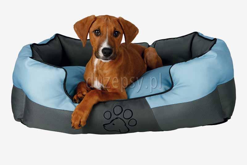 Legowisko dla małego psa sofa Chippy Trixie różowa. Legowiska dla yorka. Legowisko dla maltańczyka. Sofa dla yorka różowa. Legowisko dla małego pieska. Kanapa dla małego psa.