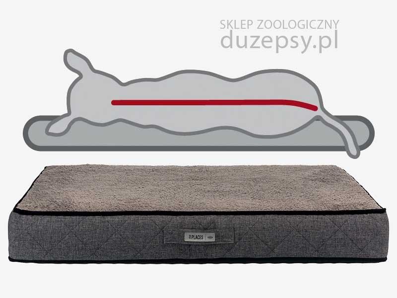 Legowisko ortopedyczne dla dużego psa; legowisko dla psa memory szare; legowisko memory foam; legowisko dla psa memory foam; legowiska dla psa memory szare; legowiska ortopedyczne dla psów; legowisko ortopedyczne dla psa; legowisko ortopedyczne dla psa 140 cm; legowisko dla psa 140 x 100 cm; legowisko dla psa sklep; legowisko dla psa trixie; legowisko dla bardzo dużego psa; legowiska dla dużych psów; legowiska dla starszych psów; legowisko ortopedyczne dla psa xxl; legowisko dla psa 140 cm, legowiska dla psa olbrzymiego; legowisko dla psa duże; legowisko dla psa seniora; legowisko dla psa hovart; legowisko dla psa doga; legowisko dla psa łatwe do prania; legowisko dla psa łatwe w czyszczeniu; legowisko dla psa owczarka niemieckiego; legowisko dla psa premium; legowisko dla psa rozbieralne; legowisko dla psa szare; legowisko dla psa ze ściąganym pokrowcem; sklep zoologiczny; DuzePsy.pl