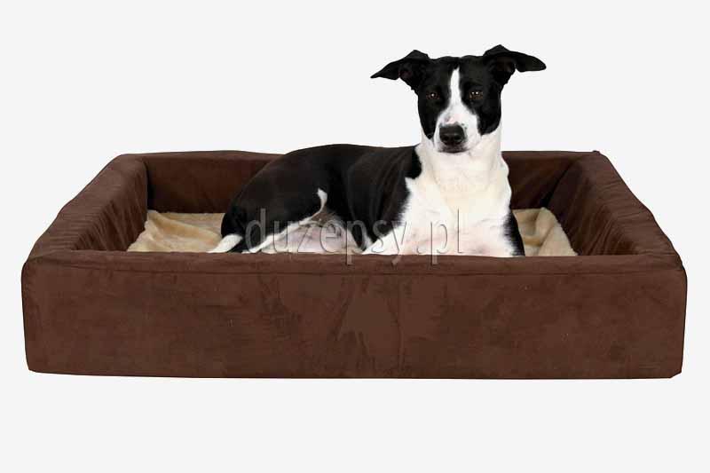 Ortopedyczne legowisko dla psa czworokątne. Legowisko ortopedyczne dla dużego psa. Legowisko ortopedyczne dla psa z pianką MEMORY. Posłanie dla psa memory foam. Legowisko ortopedyczne dla psów. Legowiska ortopedyczne dla psa, legowisko 100x80, legowiska dla psa sklep internetowy. Posłania ortopedyczne dla psów sklep zoologiczny duzepsy.pl.