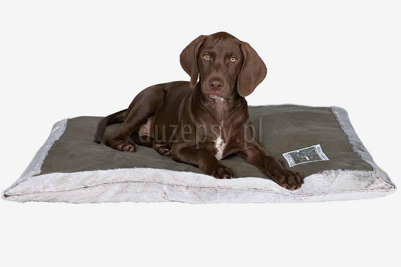 Elegancka mata dla dużego psa King of Dogs Trixie 100 x 70 cm. Posłanie dla psa. Mata dla psa do spania. Duża mata dla psa. Legowiska dla psów. Legowisko dla psa duże. Maty dla psów sklep zoologiczny duzepsy.pl.